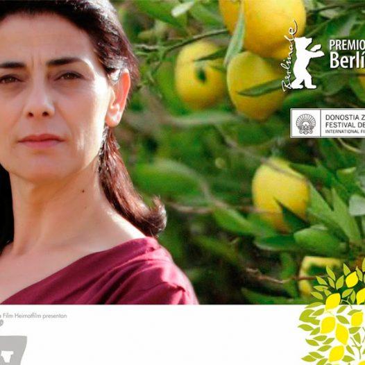 """Cinefòrum Duoda. Significant mirades. Pel·lícula: """"Los limoneros"""""""