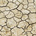Característiques generals de la dinàmica climàtica recent i el potencial canvi climàtic